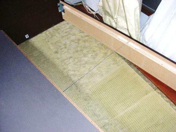 畳の白かび